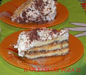 tort egiptean 22