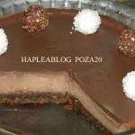 cheesecake de ciocolata 20