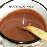 cheesecake de ciocolata 9