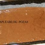 prajitura cu crema de branza 8