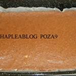 prajitura cu crema de branza 9