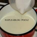 tarta cu crema de vanilie si fructe 2