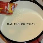 tarta cu crema de vanilie si fructe 3