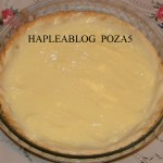 tarta cu crema de vanilie si fructe 5