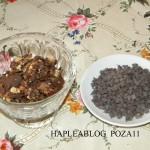 inghetata de ciocolata 11