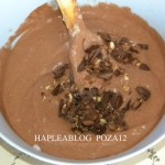 inghetata de ciocolata 12