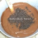 inghetata de ciocolata 13