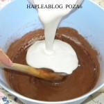 inghetata de ciocolata 6