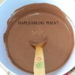 inghetata de ciocolata 7
