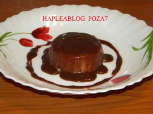 panna cotta de ciocolata 7