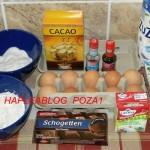 tort cu crema de ciocolata 1