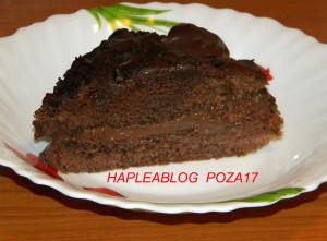 tort cu crema de ciocolata 17