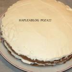 tort cu crema mascarpone si frisca 22