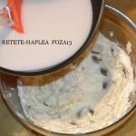 prajitura cu crema din lapte de cocos 13