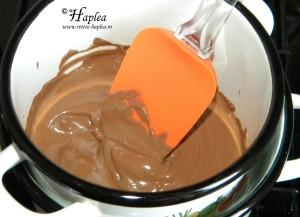 tarta cu crema de branza si ciocolata poza8