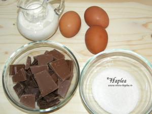 spuma de ciocolata poza 1