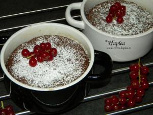 lava cake poza 10