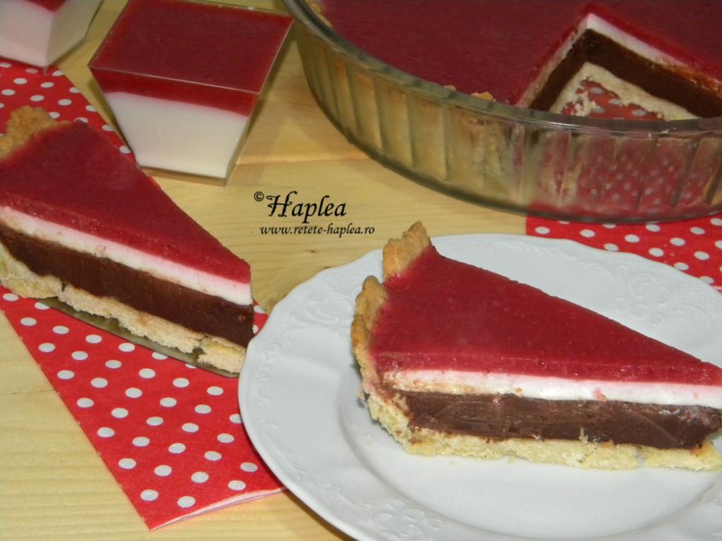 tarta dulce in trei culori poza 17