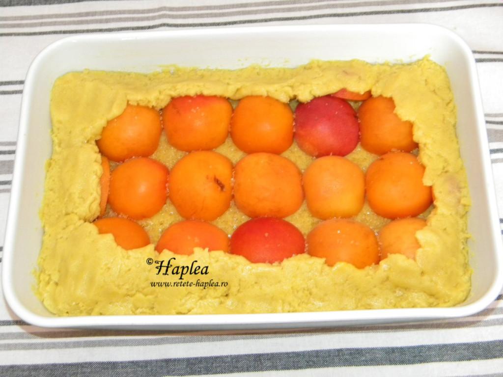 tarta cu caise poza 6