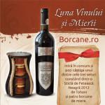 Castigatorii concursului Borcane.ro