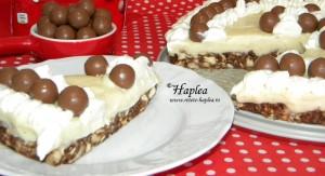prajitura maltesers cu crema de vanilie poza final