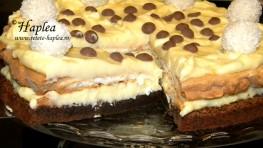 tort-ciocolatos-cu-bezea-si-crema-de-vanilie-poza-final