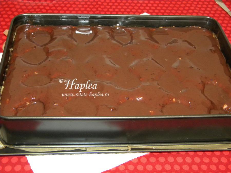 prajitura cu caise si ciocolata poza 9