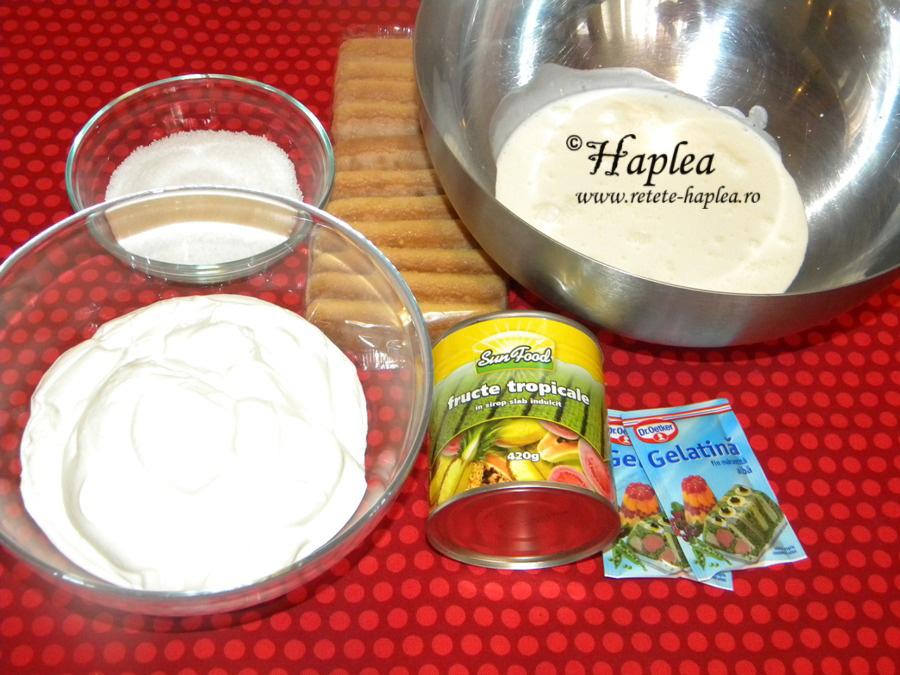 prajitura fara coacere cu iaurt si fructe tropicale poza 1