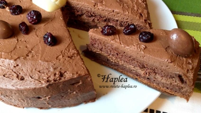 tort cu blat de cacao si ganache de ciocolata poza final