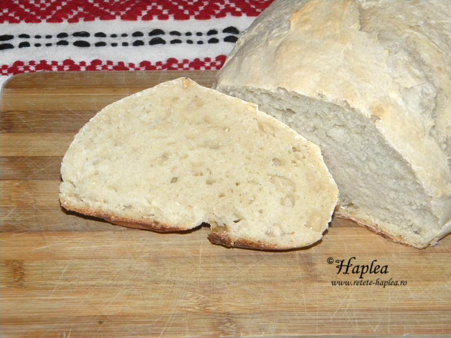 paine cu un gram de drojdie
